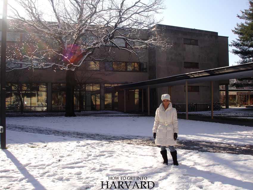 harvard university student life handbook